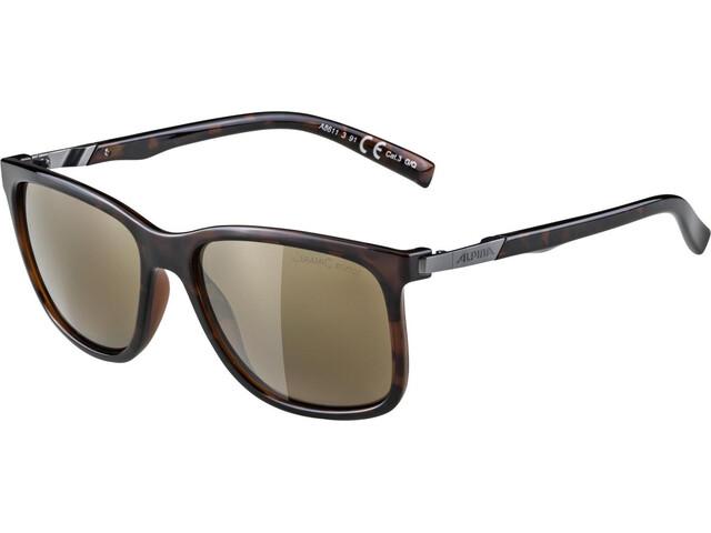 Alpina Bakina Glasses havanna